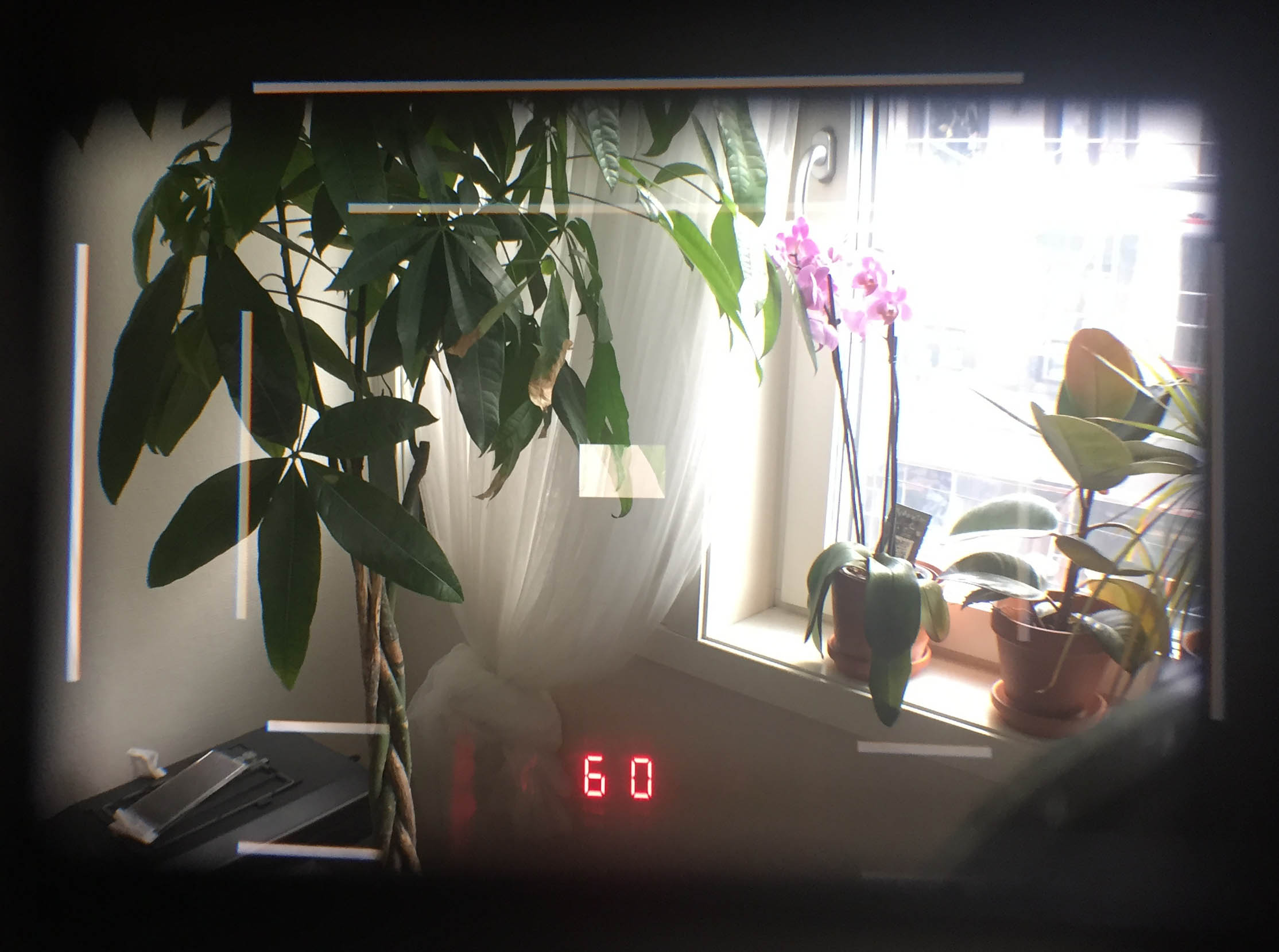 viewfinder-view